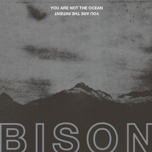 Bison Cover