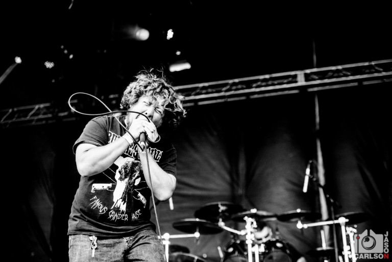 Pig Destroyer Live from Chicago Open Air By Jason Carlson