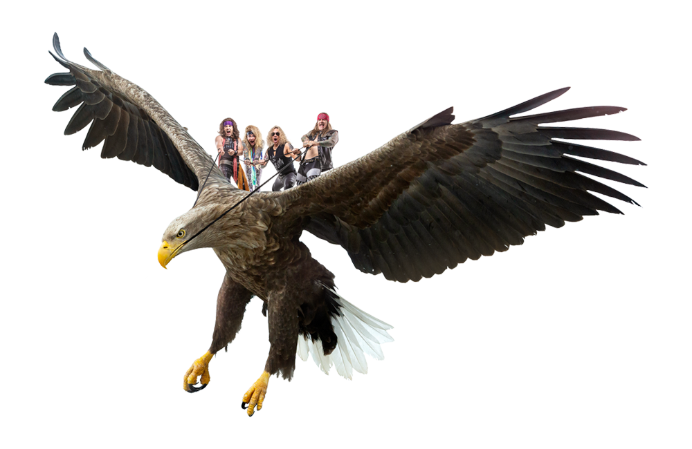 Steel Panther Eagle
